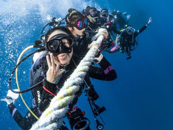 Local Diving, Scuba diving